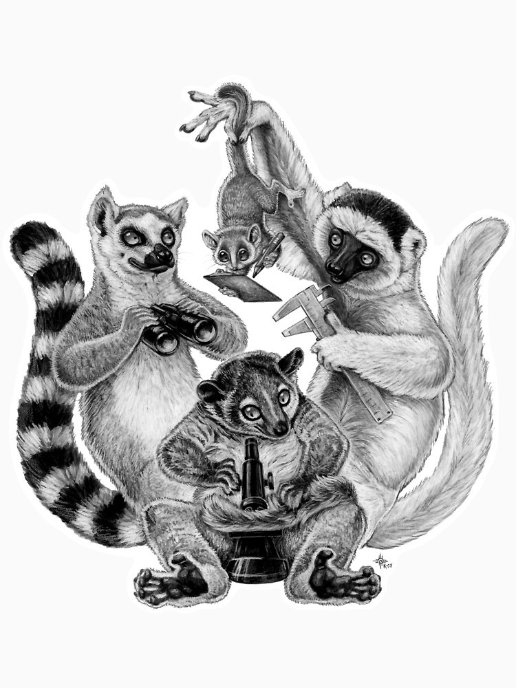Awesome grey-ink lemur company with measuring instruments tattoo design