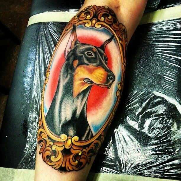 Awesome old school colorful doberman in mirror frame tattoo on arm