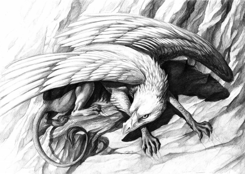 Awesome pencilwork hunting griffin tattoo design