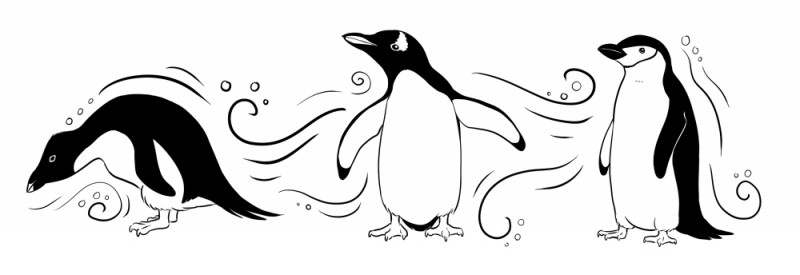 Baby penguin in different poses tattoo design by Twapa