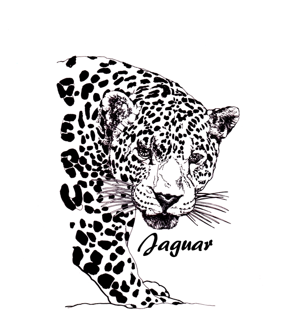 Beautiful black-and-white half jaguar with quote tattoo design