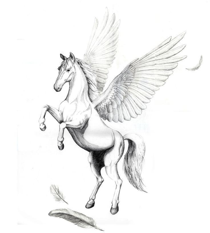 Beautiful pencilwork pegasus and falling feathers tattoo design