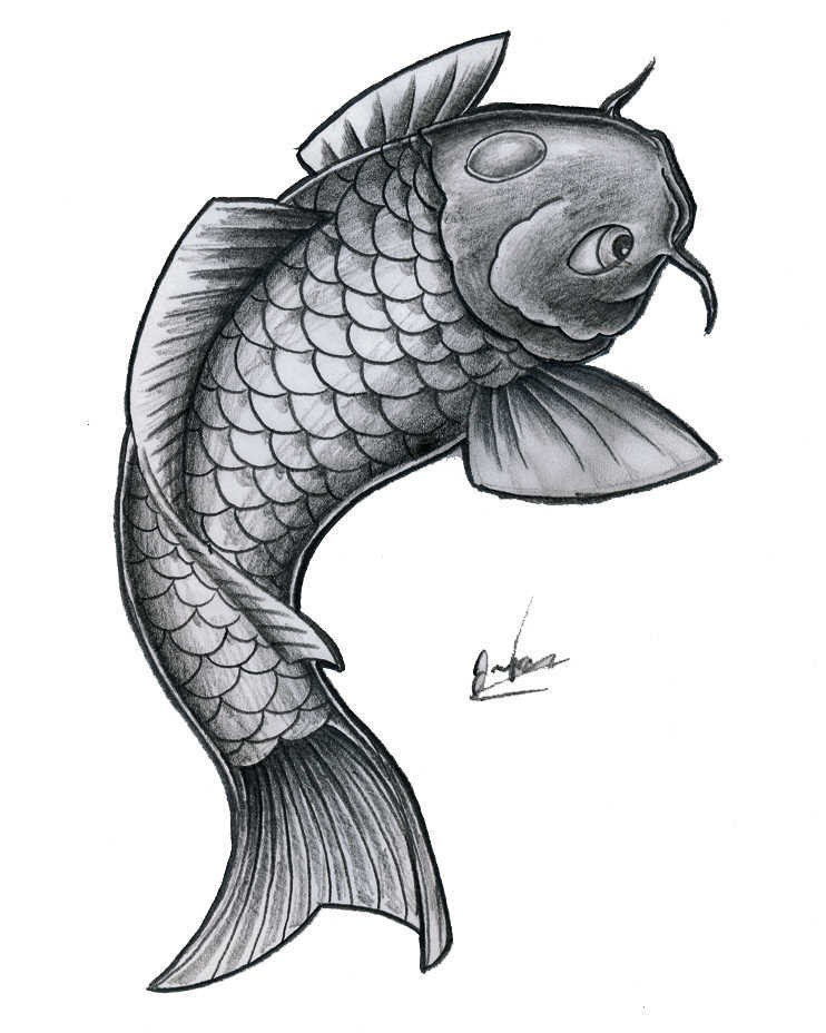 Big grey koi fish tattoo design for Koi fish black and grey