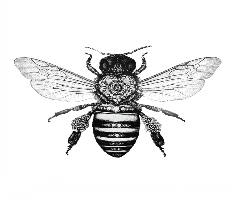 Black-and-white bee with ornated heart print on body tattoo design