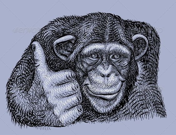 Black-and-white chimpanzee showing OK sign tattoo design