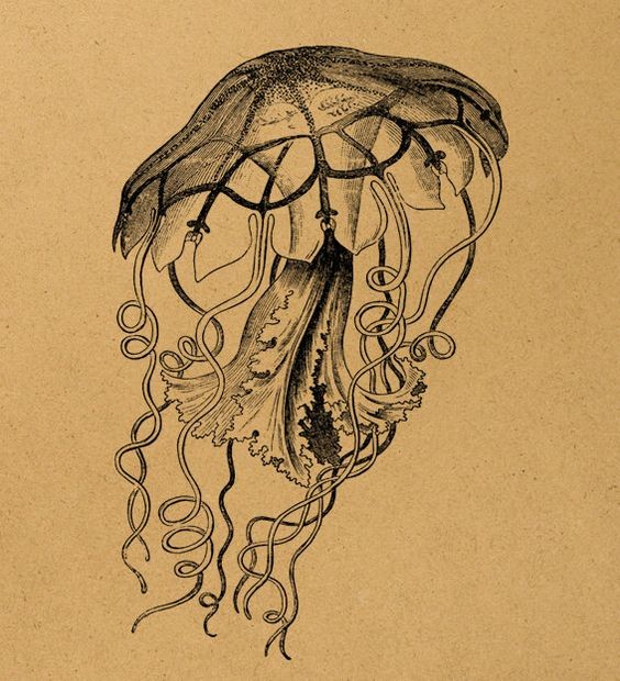 Black-and-white gigant-headed jellyfish with uncolored thin tentacles tattoo design