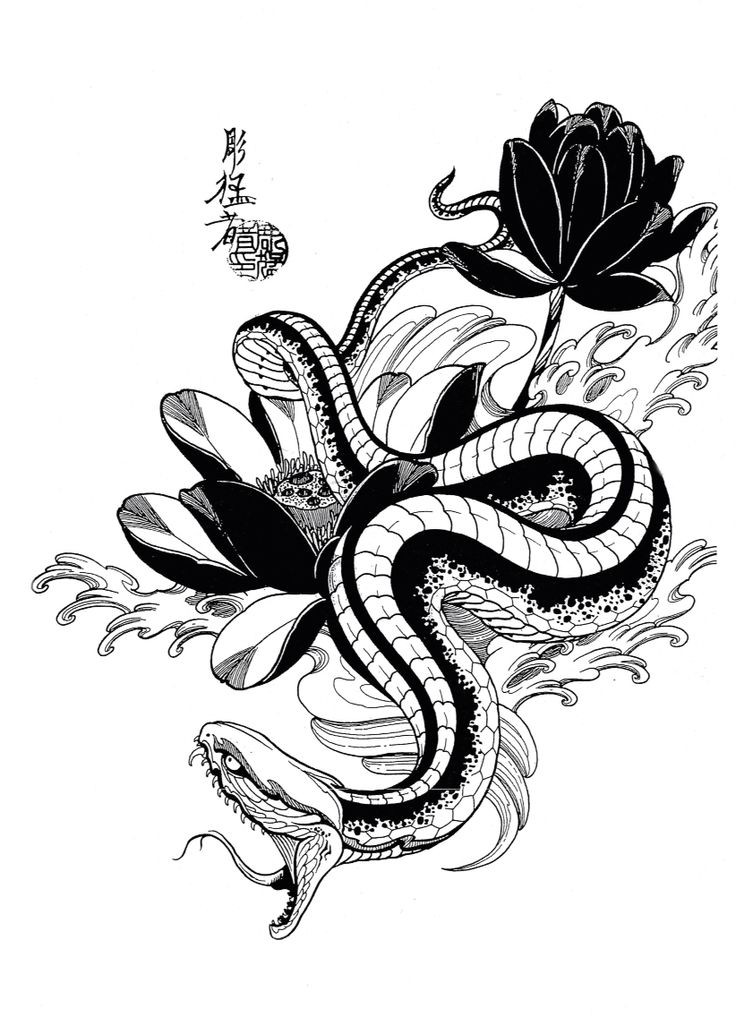 black and white hissing snake and lotus flowers tattoo design. Black Bedroom Furniture Sets. Home Design Ideas