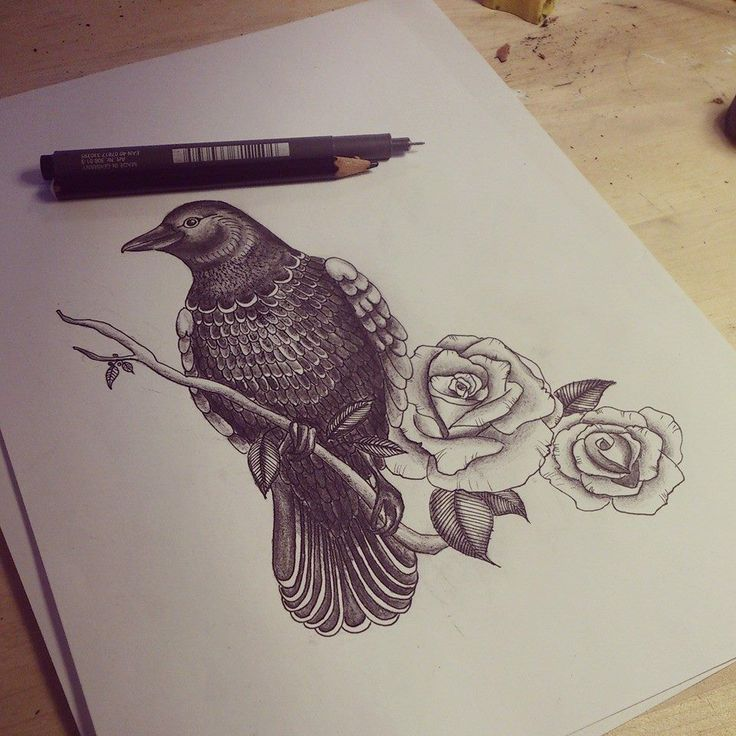 Black-and-white raven sitting on branch and rose buds tattoo design
