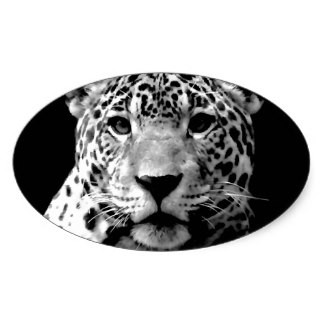 Black-and-white realistic jaguar face in oval frame tattoo design