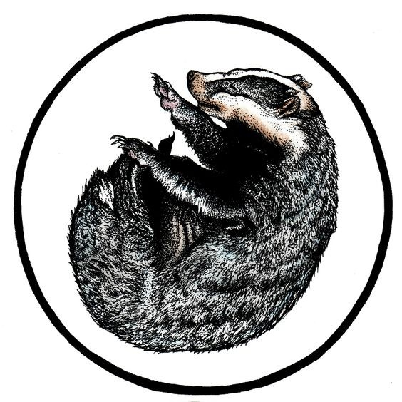 Black-and-white sleepy curled rodent in circle frame tattoo design