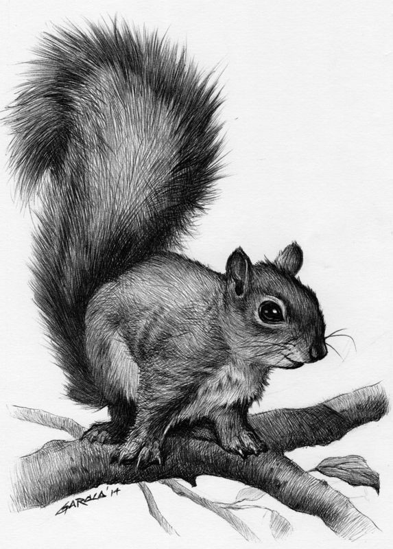Black-and-white smiling squirrel sitting on branches tattoo design