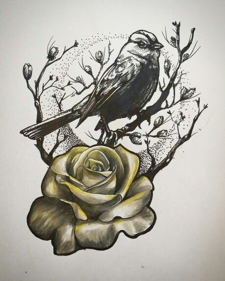 black and white sparrow sitting on tree and white rose with yellow shadows tattoo design. Black Bedroom Furniture Sets. Home Design Ideas