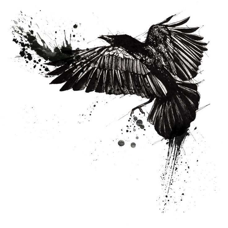 Black-ink flying raven with watercolor effect tattoo design