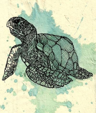 Black-ink turtle sitting on blue watercolor splash background tattoo design
