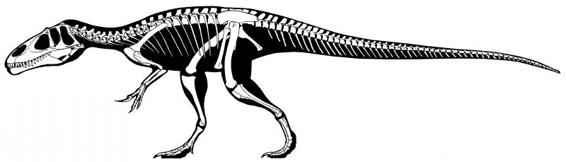 Black-skin dinosaur with white skeleton inside tattoo design