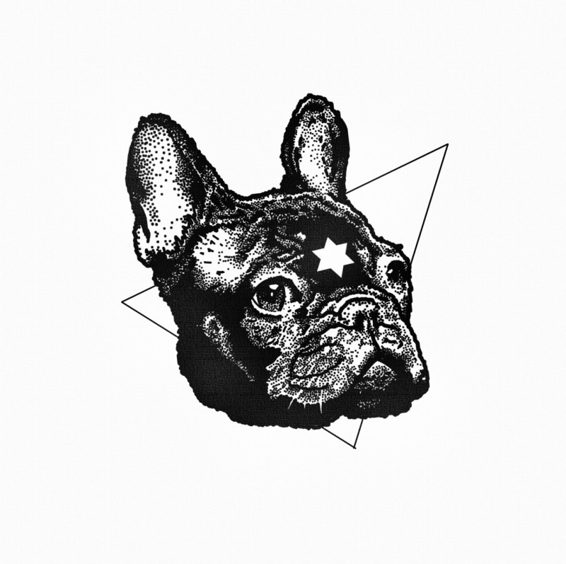 Black bulldog head with star sign on triangle background tattoo design