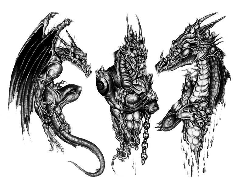 Black Dangerous Dragon In Three Different Poses Tattoo
