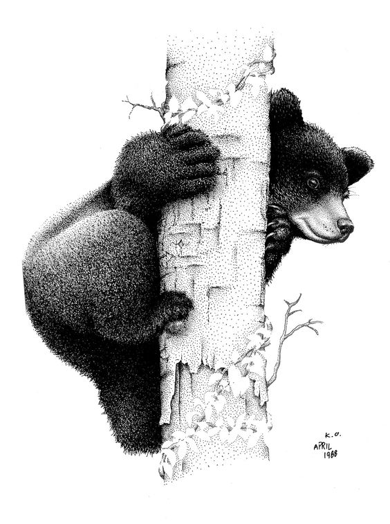 black dotwork bear climbing a tree stem tattoo design. Black Bedroom Furniture Sets. Home Design Ideas