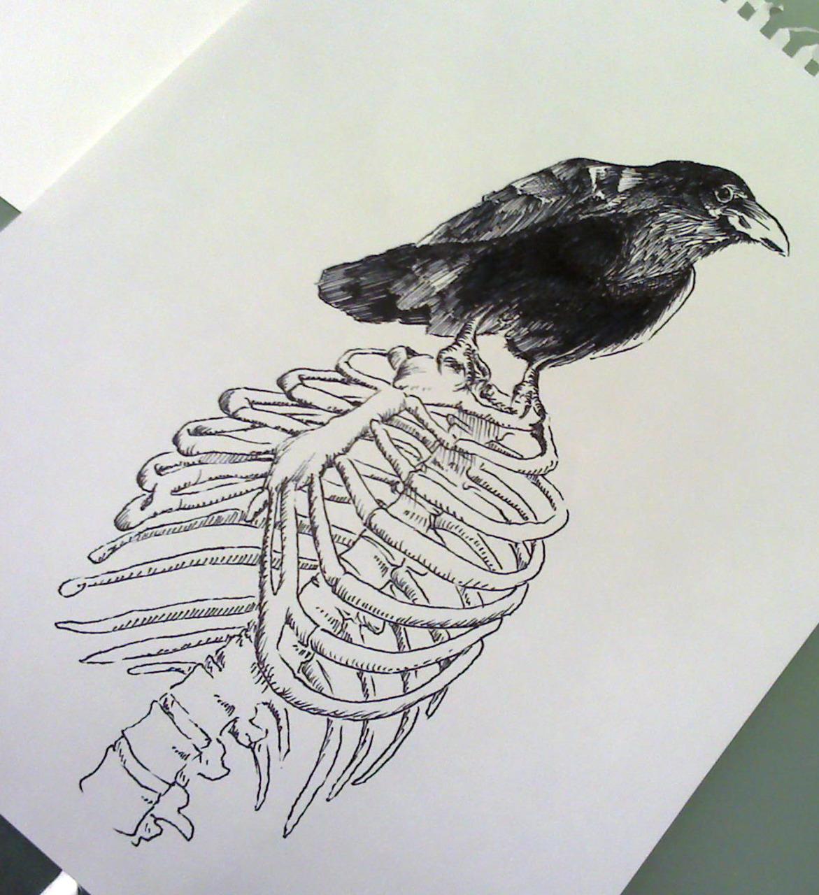 Black Raven Sitting On Human Skeleton Chest Tattoo Design