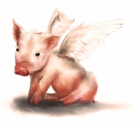 Blurred rosy angel pig with white wings tattoo design