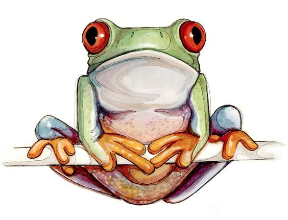 Calm colored frog sitting on branch tattoo design