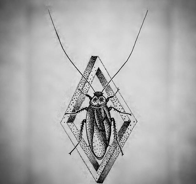 Calm dotwork bug in 3D rhombus frame tattoo design