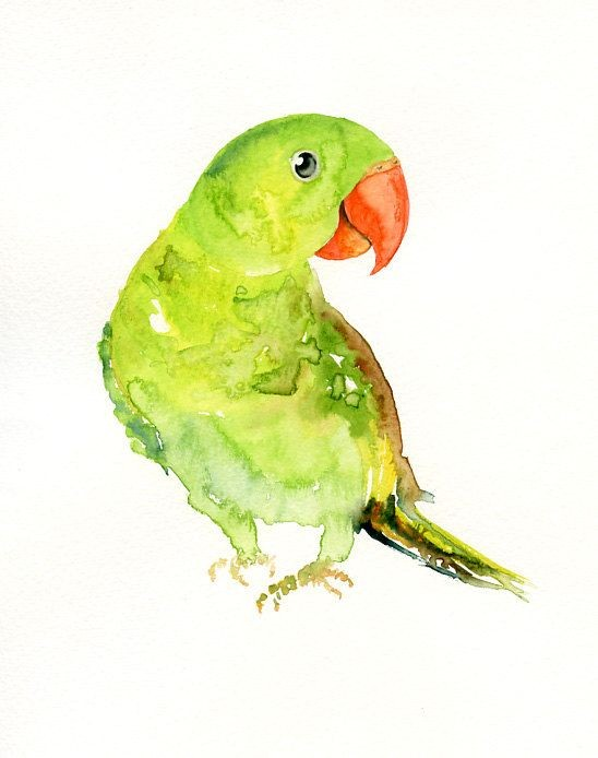 Charming green watercolor parrot with orange beak tattoo design