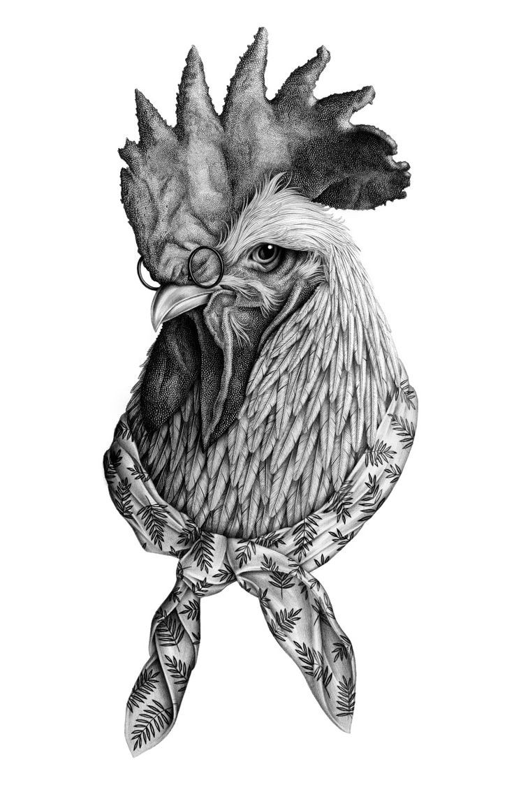 Clever grey-ink rooster in glasses tattoo design