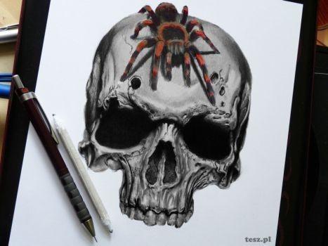 Colorful fluffy tarantula spider running on skull tattoo design