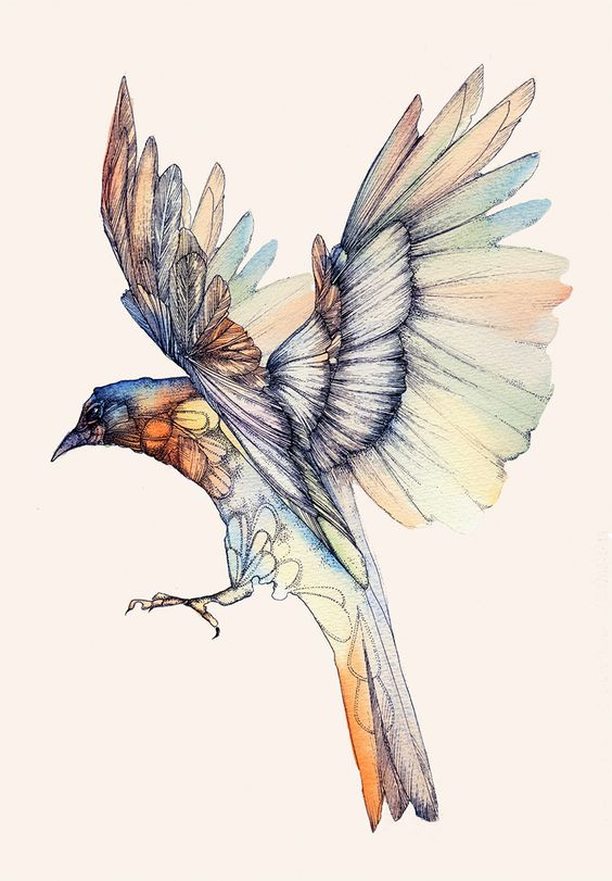 Colorful flying bird tattoo design