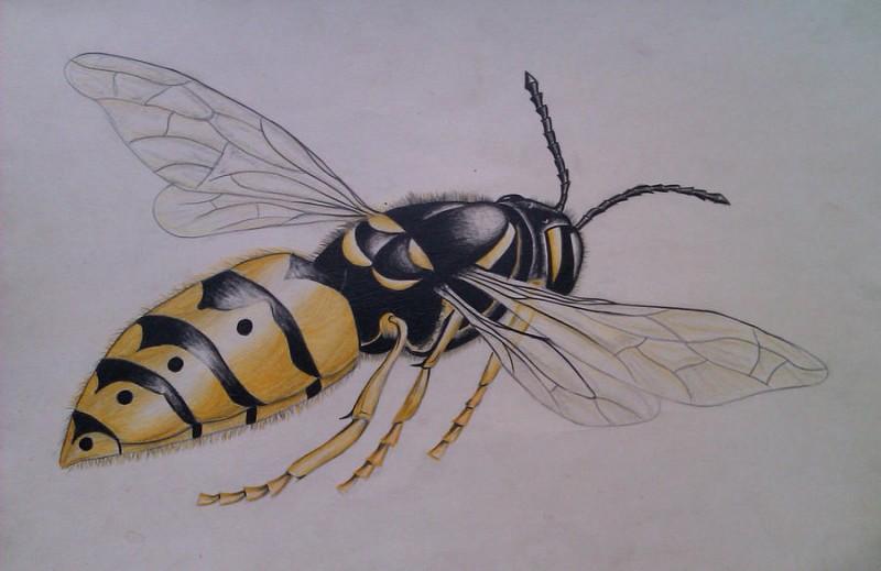 Colorful flying honey bee tattoo design - Tattooimages.biz