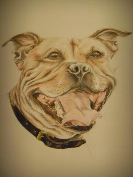 Colorful open-mouth dog portrait tattoo design