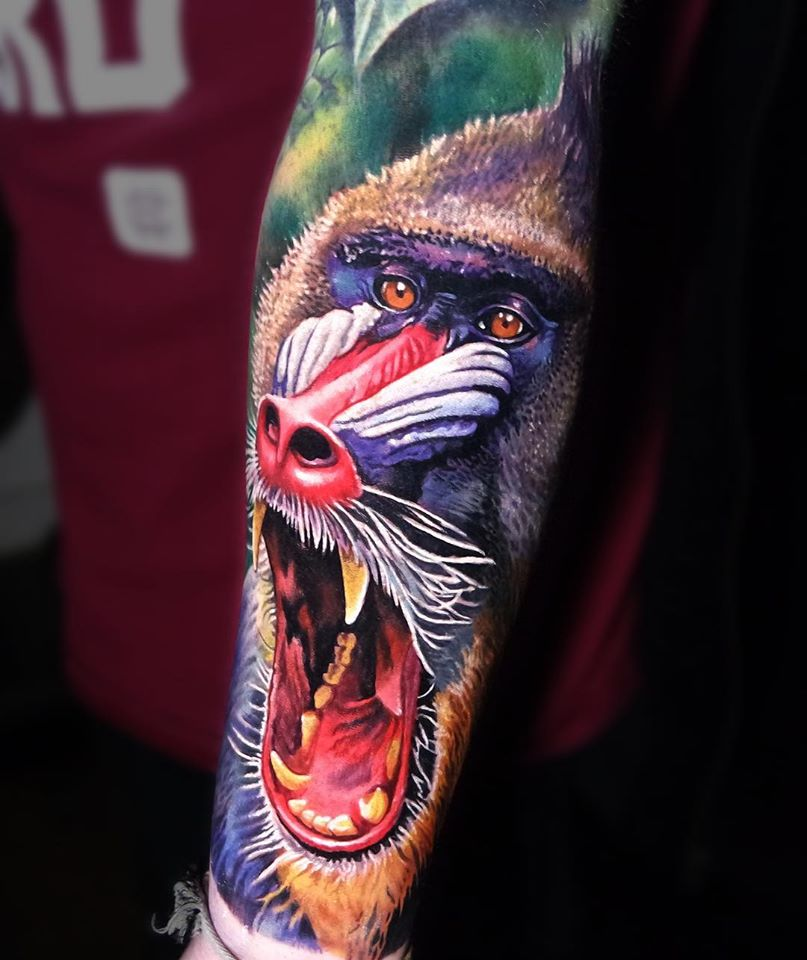 Colorful realistic Mandrill Baboon tattoo on forearm