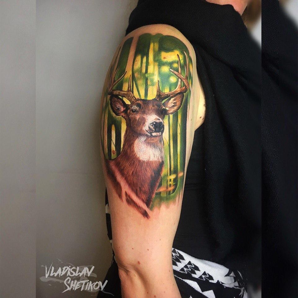 Colorfull deer tattoo on shoulder