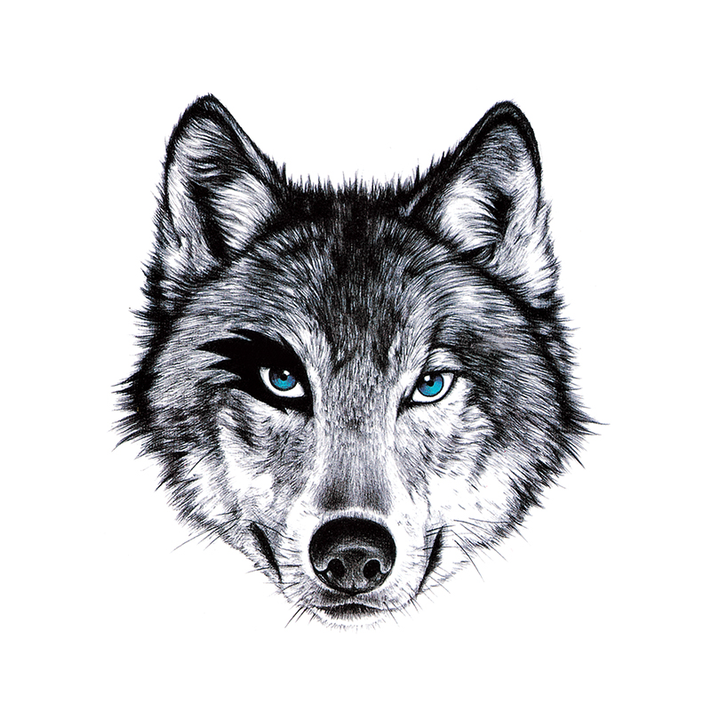 Confident blue-eyed wolf muzzle tattoo design