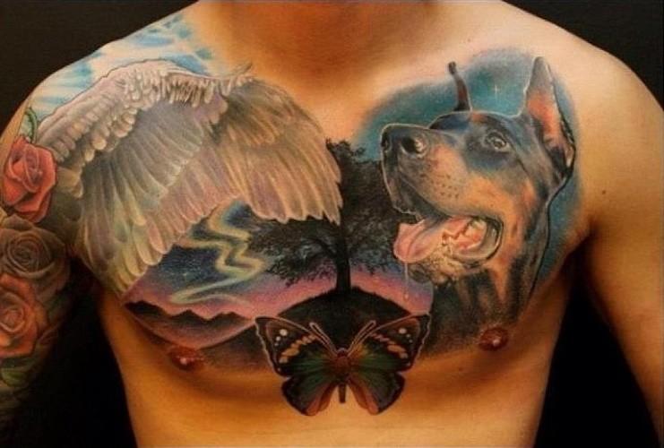 Cooles Brust Farbtattoo mit  Dobermann, Schwanenflügel und Schmetterling für Männer