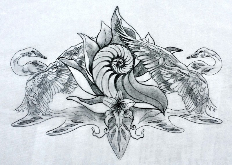 Cool grey-ink swan couple with shell and lotus flowers tattoo design