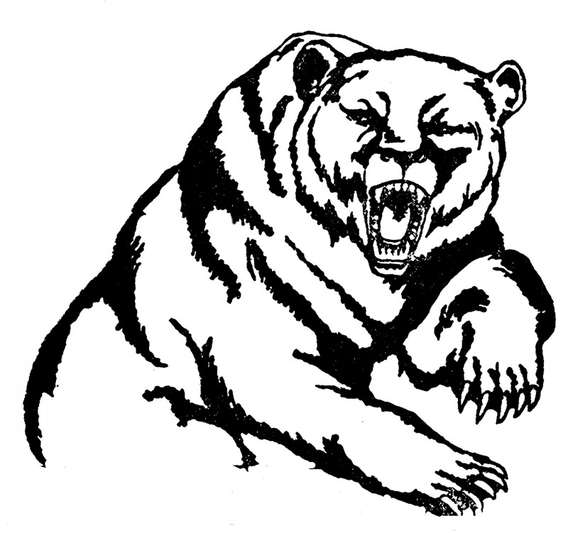 Cool outline roaring grizzly bear tattoo design