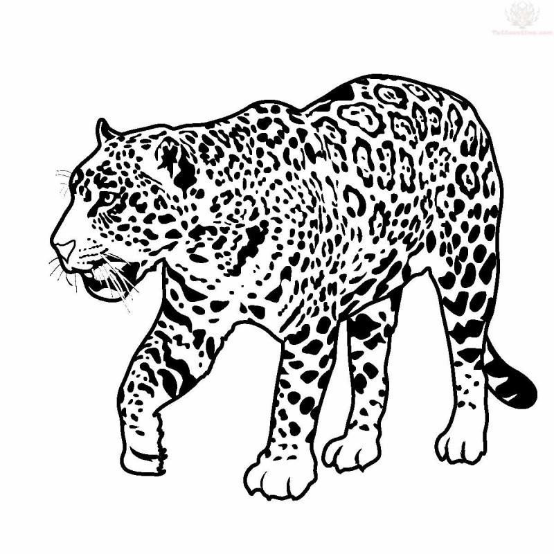 Cool outline walking jaguar in full growth tattoo design