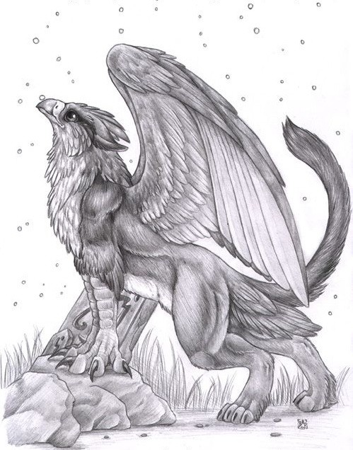 Cool pencilwork griffin looking on the sky tattoo design