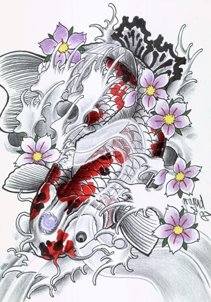 Cool red and white koi fish and purple cherry flowers for Red and white koi fish