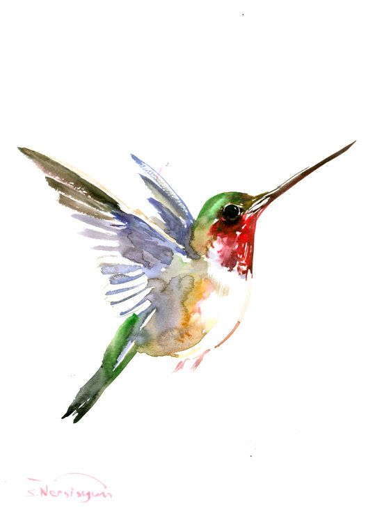 Cool watercolor flying hummingbird tattoo design ...