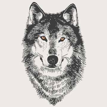 cf3d972c5a66e Cool yellow-eyed wolf head tattoo design - Tattooimages.biz