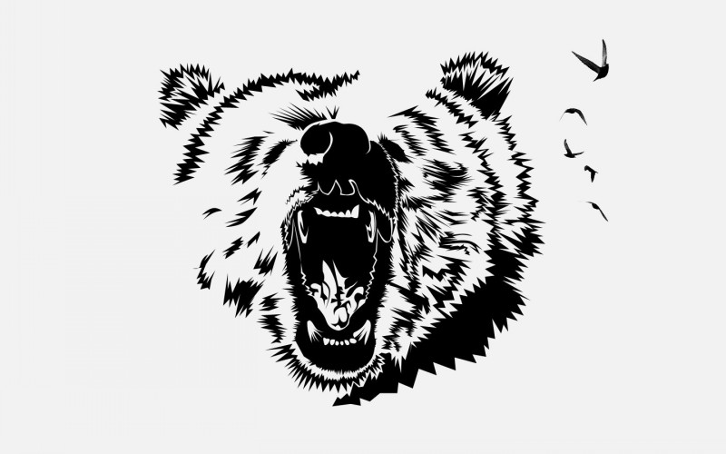 Crying grizzly head and flying birds tattoo design by Camekazi