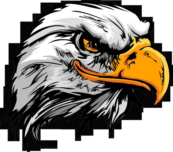 Cunning american smiling eagle head tattoo design