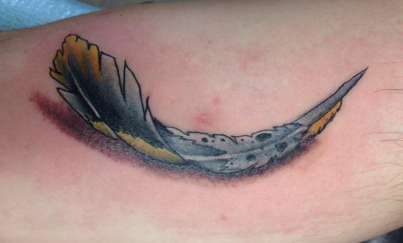 arricciata piuma colorata 3d tatuaggio su braccio