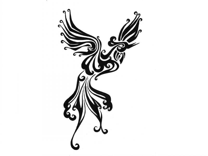 Cute black tribal phoenix with curl elements tattoo design