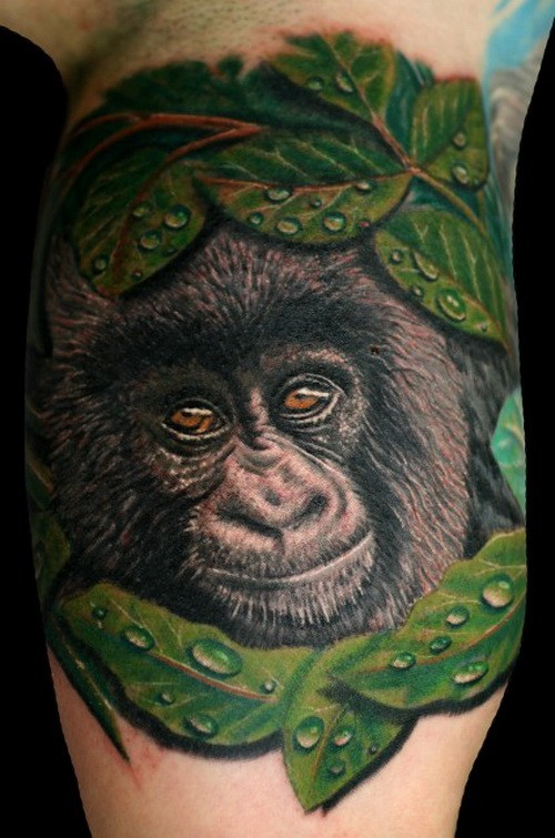 Cute color-ink gorilla head in leaves tattoo on upper arm