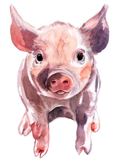 Cute colorful standing pig cub tattoo design