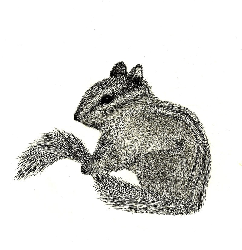 Cute grey-ink rodent keeping its own tail tattoo design by Mythic Fox
